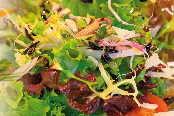 Montag – Salattag